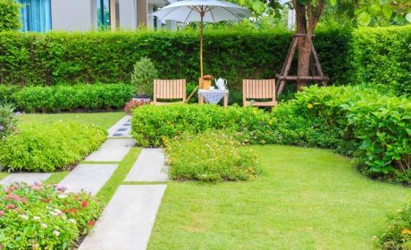 Ideas to Make Your Landscaping Stand Out
