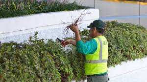 The Significance of Landscape Maintenance Services